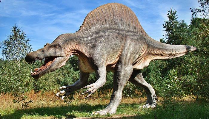 dinosaur parc
